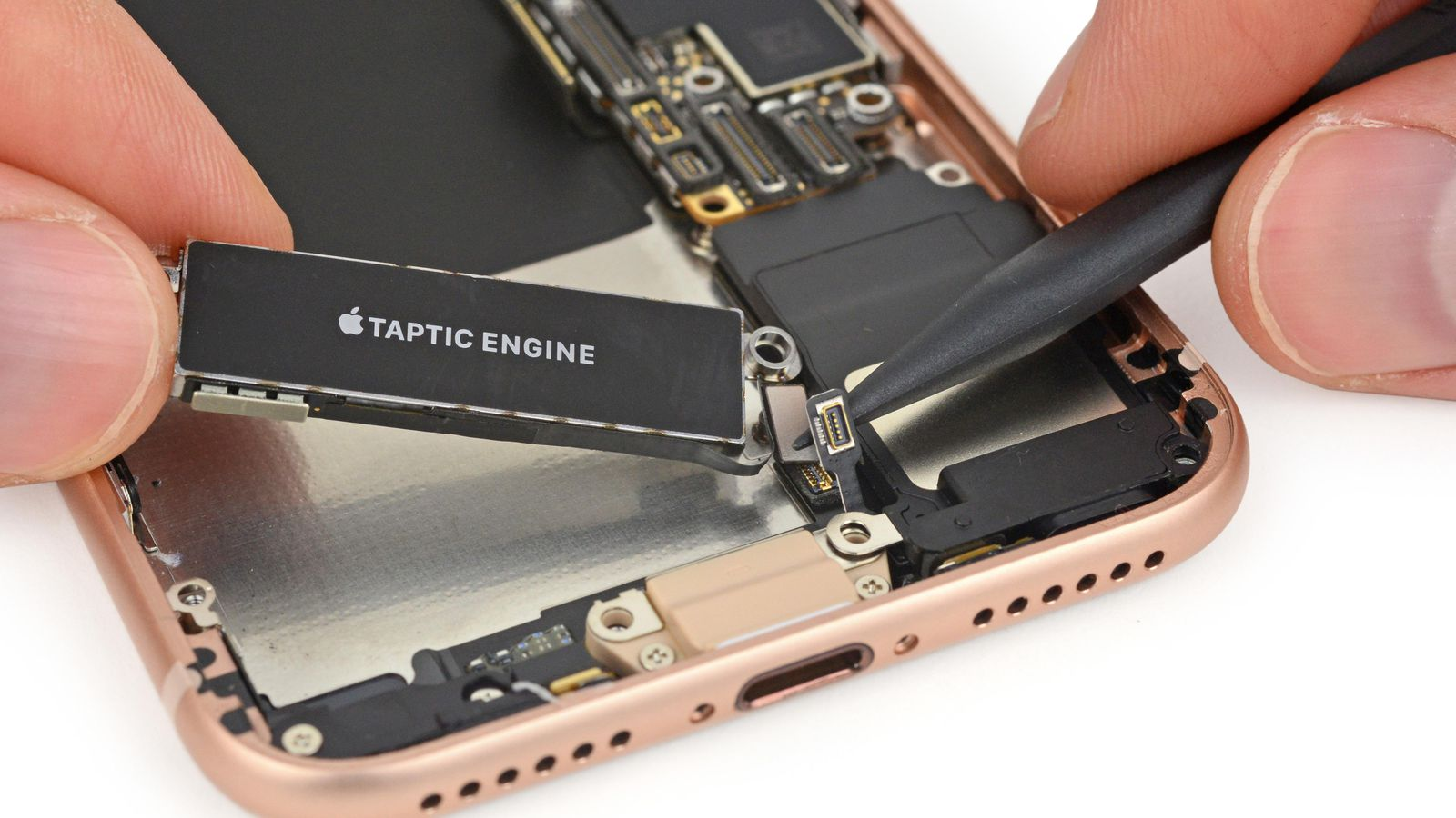 iPhone-Teardown-1