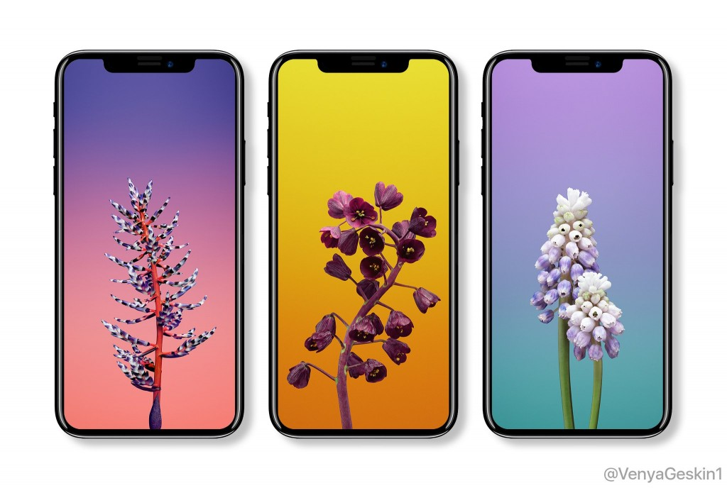 iphone-x-wallpaper